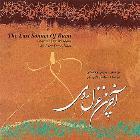 پخش و دانلود آهنگ بیا بیا از محسن دایی نبی