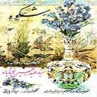 پخش و دانلود آهنگ تصنیف شکوه از عبدالحسین مختاباد