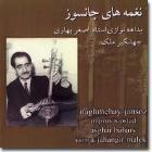 پخش و دانلود آهنگ حاجیانی افشاری - ضربی و جامه دران از علی اصغر بهاری