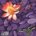 پخش و دانلود آهنگ مرغ سحر گلهای تازه ۱۵۰ ماهور از نادر گلچین