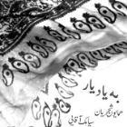 پخش و دانلود آهنگ ساز و آواز دلبر عیار از همایون شجریان