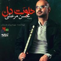 پخش و دانلود آهنگ خلوت دل از محسن مرعشی