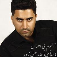 پخش و دانلود آهنگ دوست دارم از حامد حسن زاده