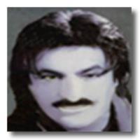 پخش و دانلود آهنگ برمیگردم ایران از جلال نصیری (فرشید)