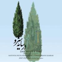 پخش و دانلود آهنگ اشک مهتاب از پویا محمدی