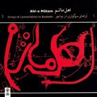 پخش و دانلود آهنگ حاجیونی از محسن شریفیان